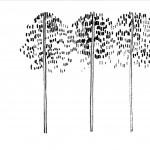 2012_Preko_Zeichnungen_Kloos_Seite_13