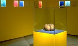 Ausstellungsgestaltung